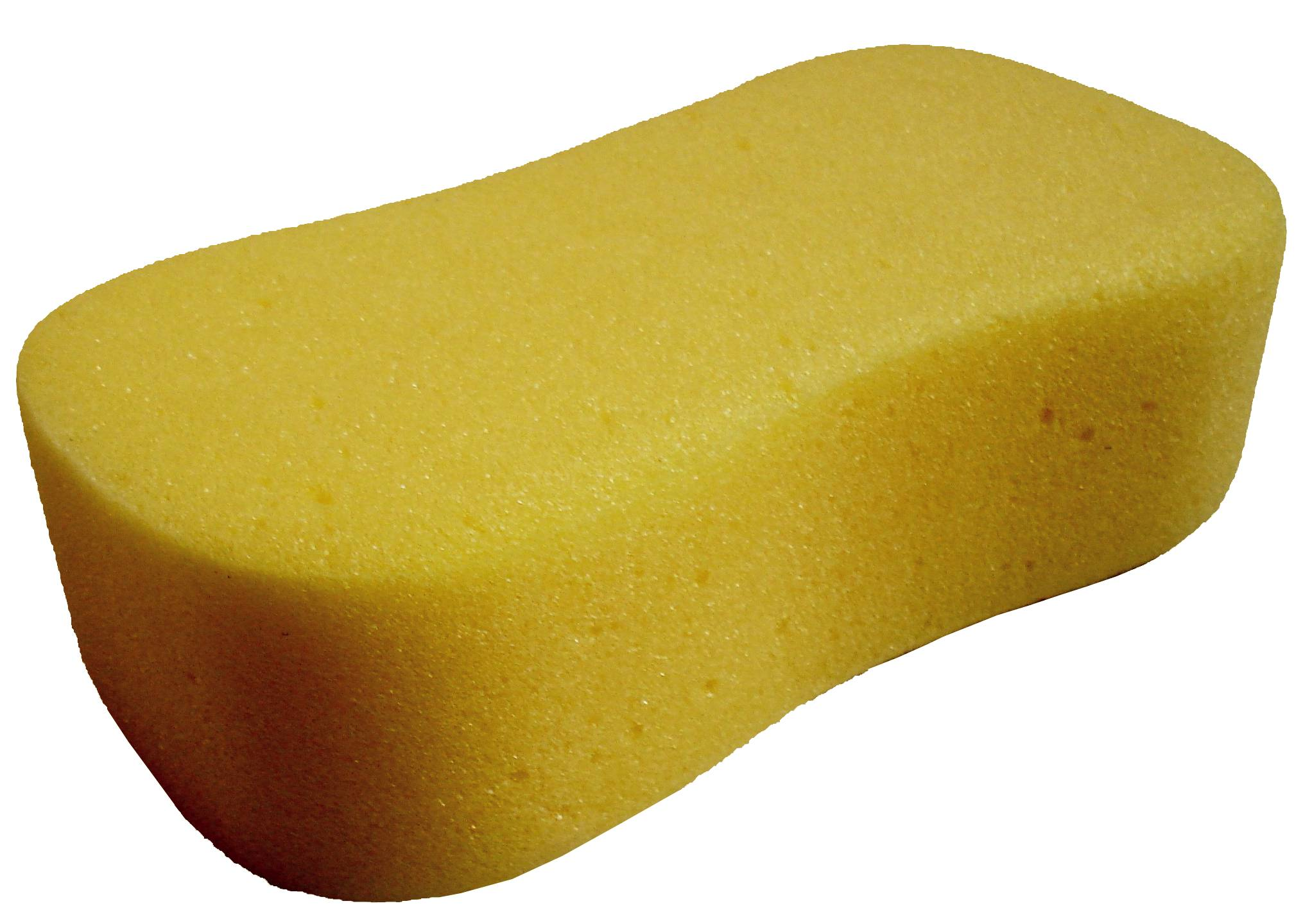 Giant Decorators Sponge